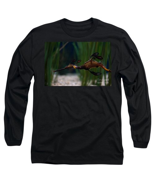 Sea Dragons Long Sleeve T-Shirt