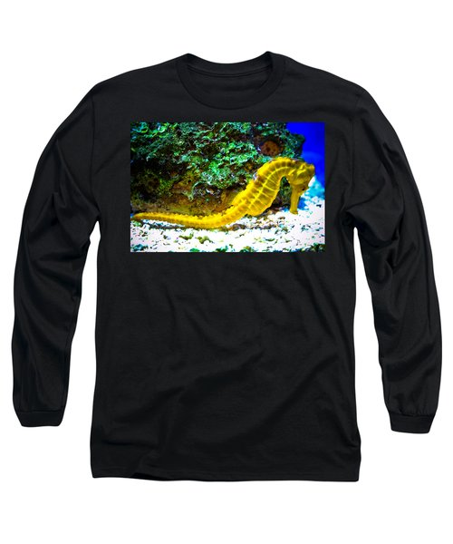 Yellow Seahorse Long Sleeve T-Shirt by Toni Hopper