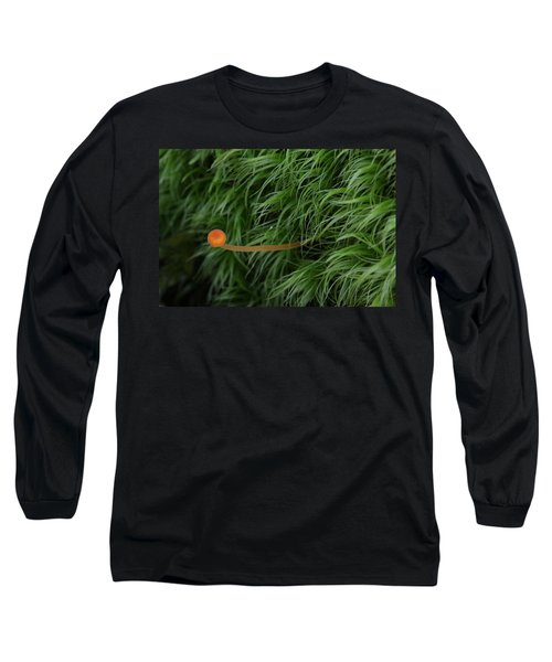 Small Orange Mushroom In Moss Long Sleeve T-Shirt by Daniel Reed