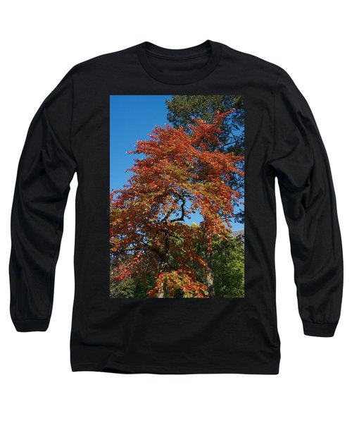Long Sleeve T-Shirt featuring the photograph Soaring Fall by Joseph Yarbrough