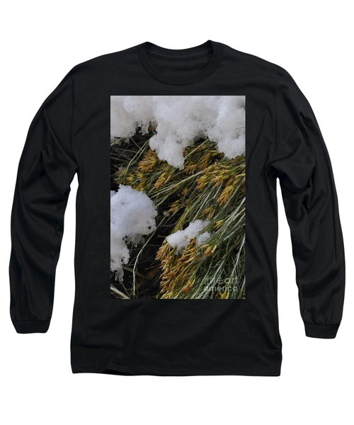Spring Arrives Long Sleeve T-Shirt