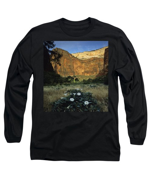 Spring At Big Bend Long Sleeve T-Shirt