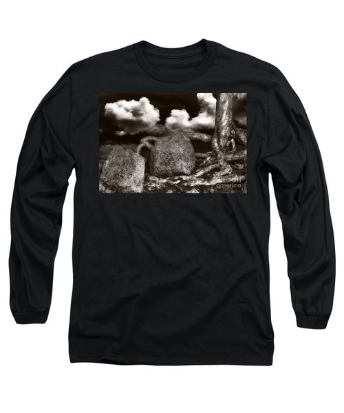 Stones And Roots Long Sleeve T-Shirt