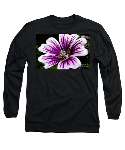 Stripped Blossom Long Sleeve T-Shirt by Larry Carr
