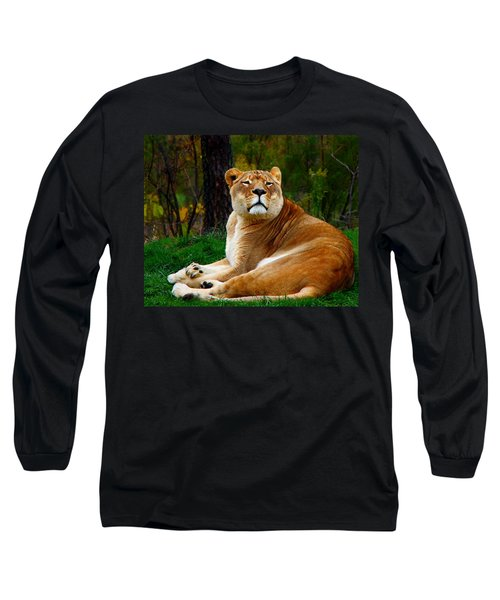Long Sleeve T-Shirt featuring the photograph The Lioness by Davandra Cribbie