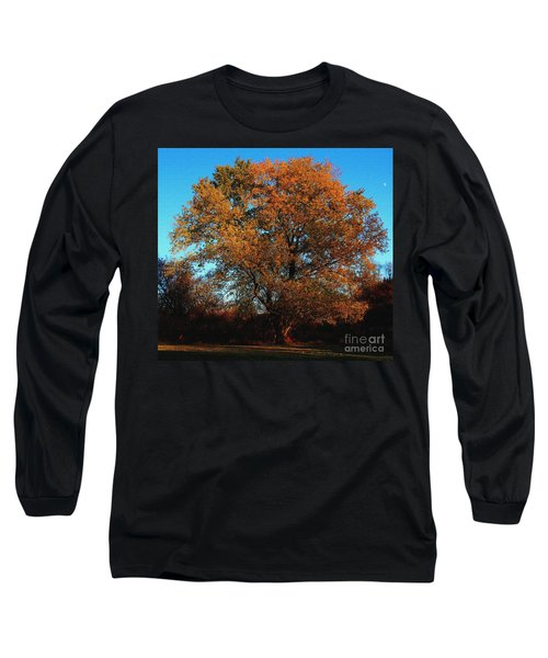 The Tree Of Life Long Sleeve T-Shirt by Davandra Cribbie