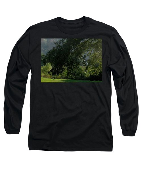 This Ole Tree Long Sleeve T-Shirt by Maria Urso