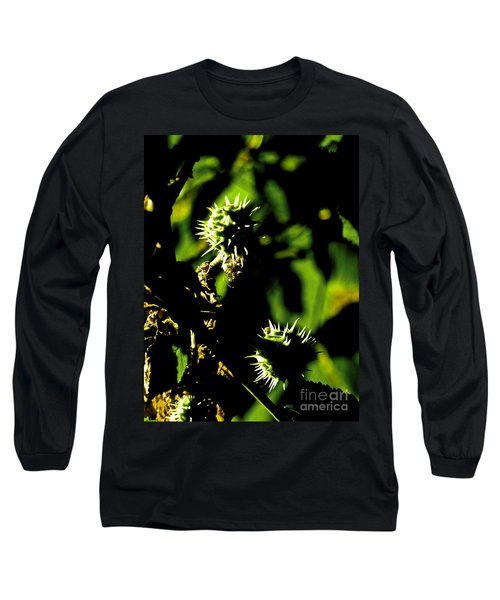 Long Sleeve T-Shirt featuring the photograph Touched By The Late Afternoon Sun by Steve Taylor