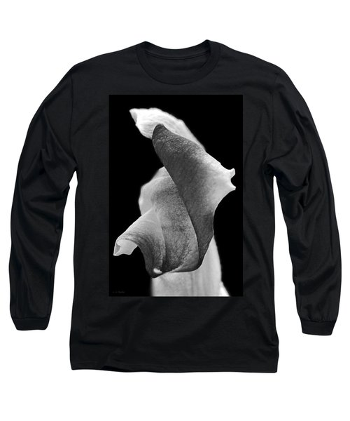 Long Sleeve T-Shirt featuring the photograph Tribute by Lauren Radke