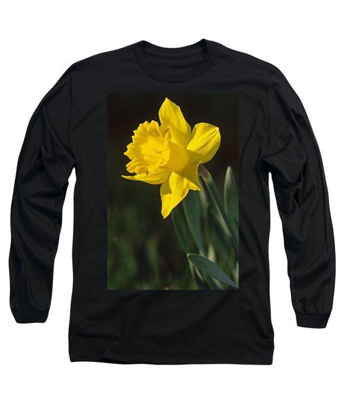 Trumpeting Daffodil Long Sleeve T-Shirt