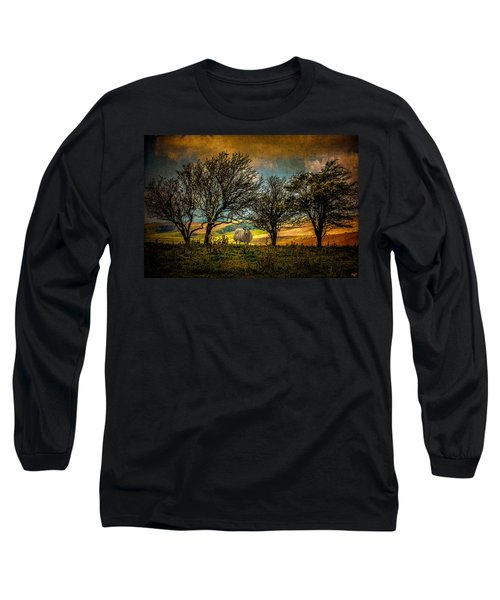 Long Sleeve T-Shirt featuring the photograph Up On The Sussex Downs In Autumn by Chris Lord