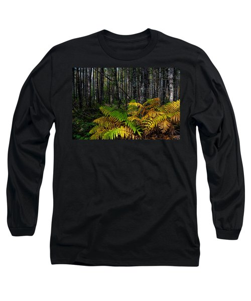 Where The Ferns Grow Long Sleeve T-Shirt by Ronald Lutz