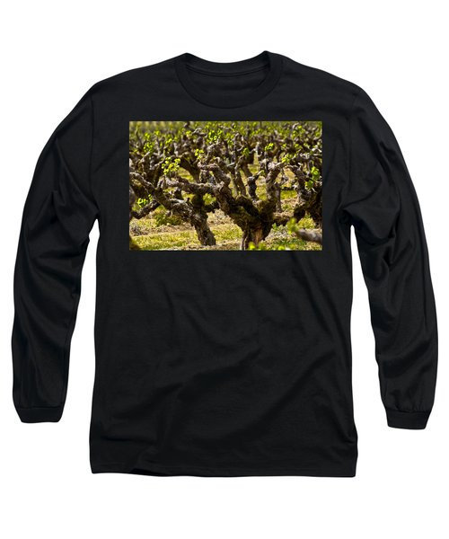 Wine On The Vine Long Sleeve T-Shirt