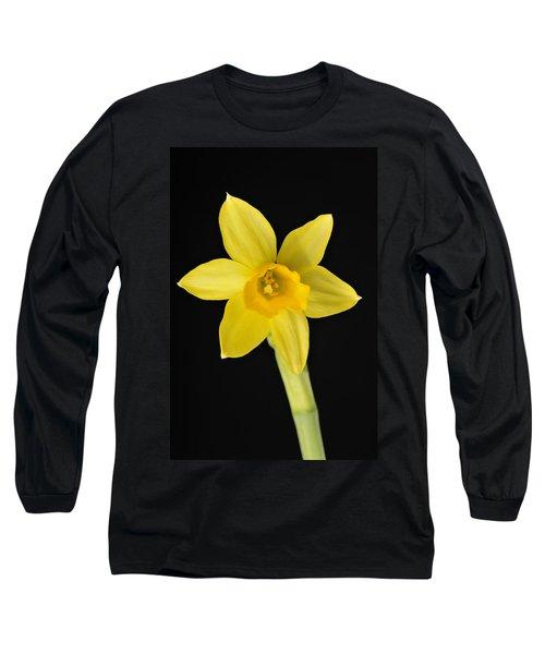 Yellow Daffodil Black Background Long Sleeve T-Shirt