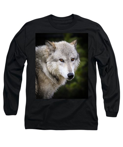 Long Sleeve T-Shirt featuring the photograph Yellow Eyes by Steve McKinzie