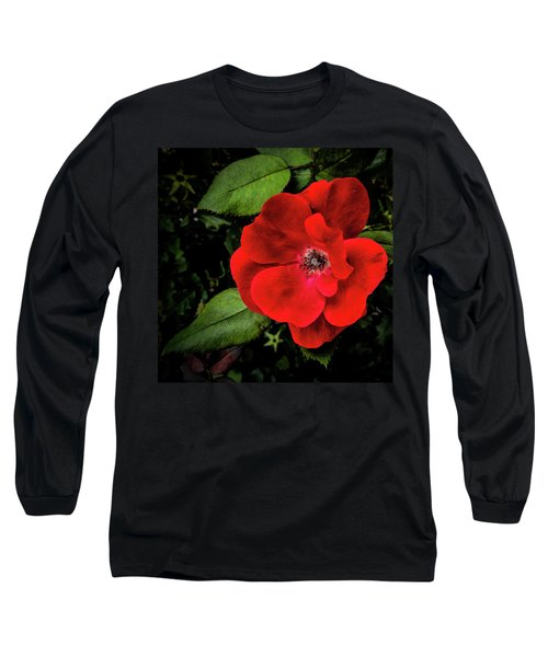 A Knockout Long Sleeve T-Shirt