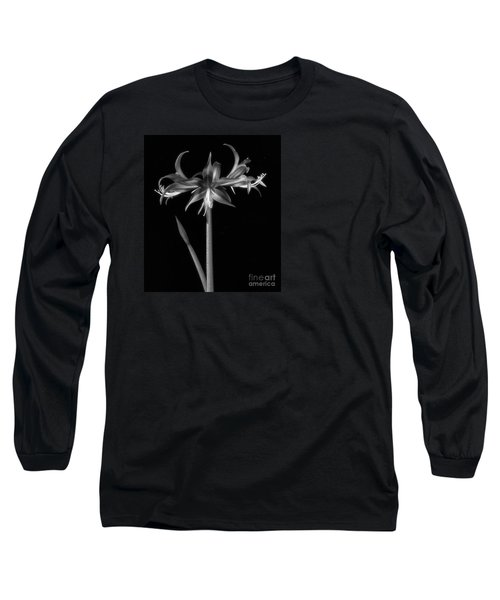 Amaryllis 'quito' Long Sleeve T-Shirt