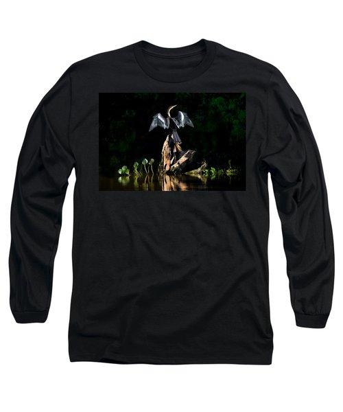 Anhinga Anhinga Anhinga, Pantanal Long Sleeve T-Shirt by Panoramic Images