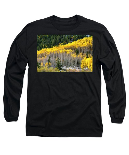Aspen Trees In Fall Color Long Sleeve T-Shirt