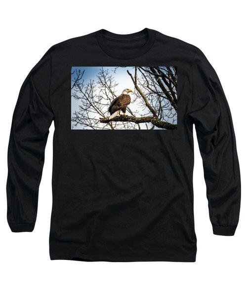 Bald Eagle Majesty Long Sleeve T-Shirt