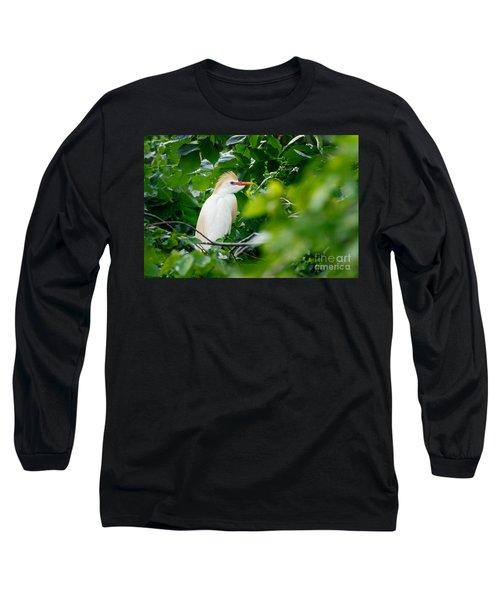 Cattle Egret At Rest Long Sleeve T-Shirt