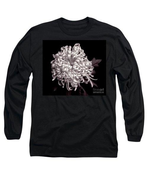 Chrysanthenmum 'satin Ribbon' Long Sleeve T-Shirt