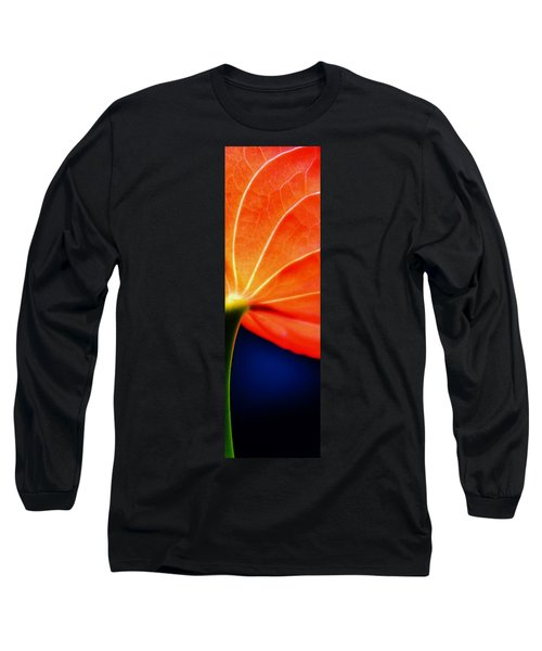 Close Up Red Long Sleeve T-Shirt by Werner Lehmann
