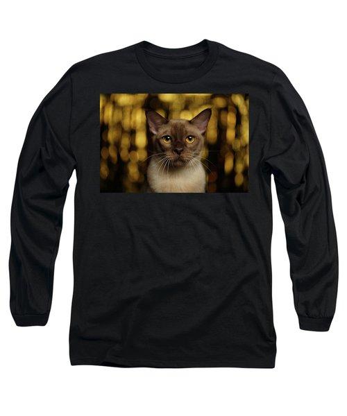 Closeup Portrait Burmese Cat On Happy New Year Background Long Sleeve T-Shirt