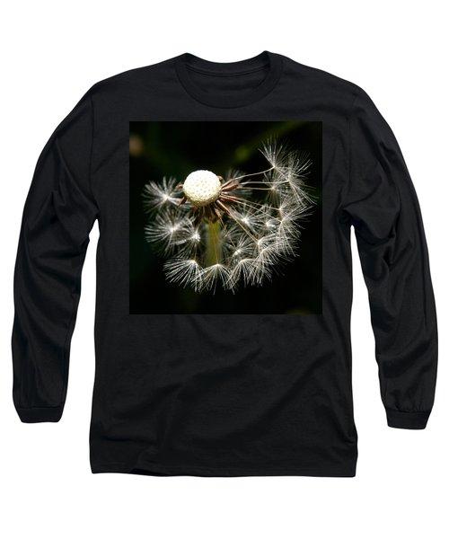 Dandelion Long Sleeve T-Shirt by Ralph A  Ledergerber-Photography