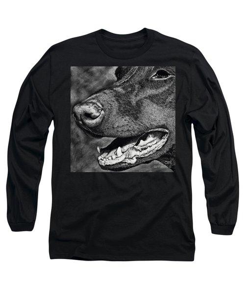 Doberman Pinscher Long Sleeve T-Shirt by Terri Mills