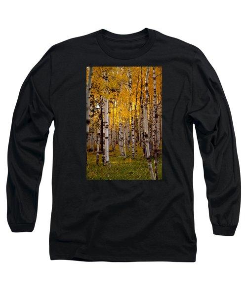 Fall At Snowbowl Long Sleeve T-Shirt by Tom Kelly