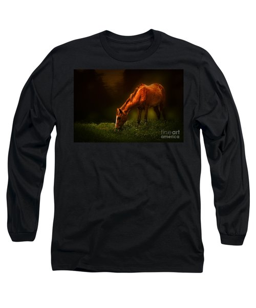 Grazing Long Sleeve T-Shirt by Charuhas Images