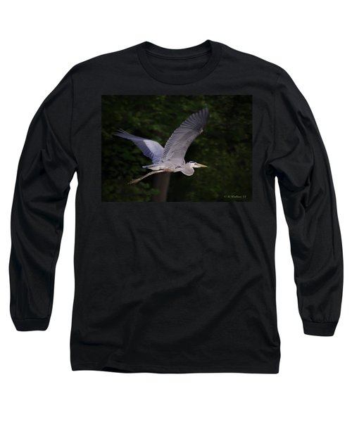 Great Blue Heron In Flight Long Sleeve T-Shirt by Brian Wallace