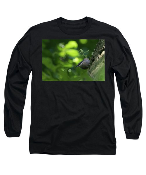 Nuthatch Long Sleeve T-Shirt