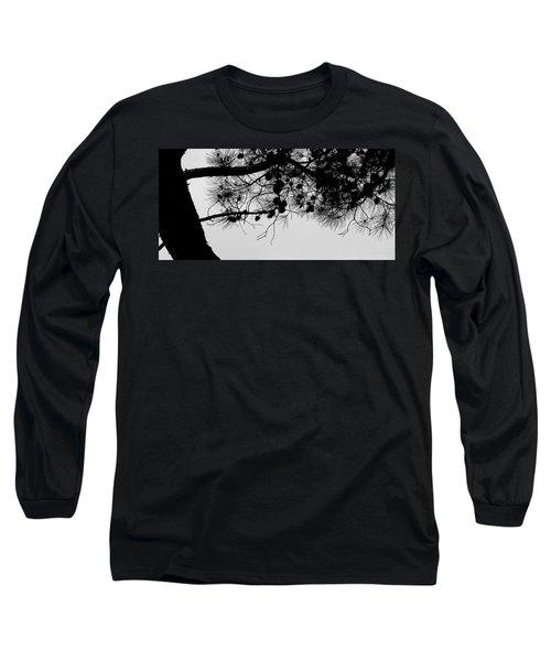Pine Cone Branch Long Sleeve T-Shirt