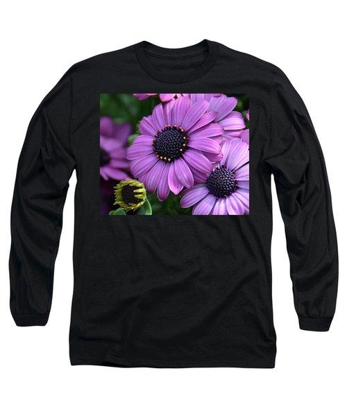 African Daisy Long Sleeve T-Shirt by Ronda Ryan