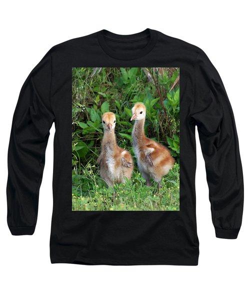 Long Sleeve T-Shirt featuring the photograph Sandhill Crane Chicks  by Chris Mercer
