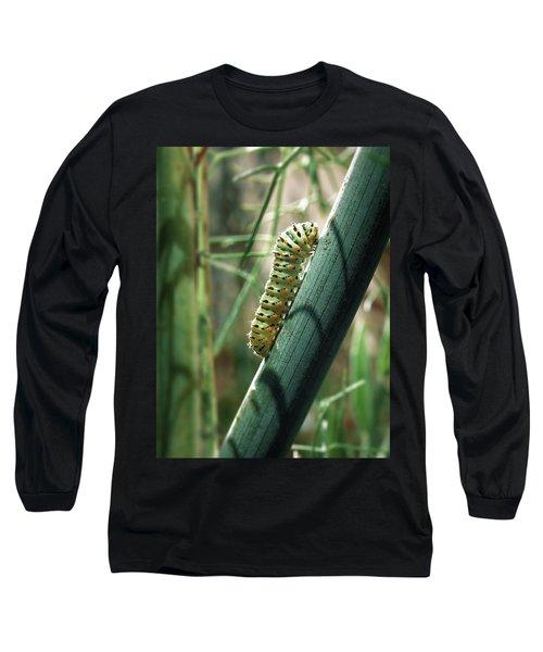 Swallowtail Caterpillar Long Sleeve T-Shirt by Meir Ezrachi
