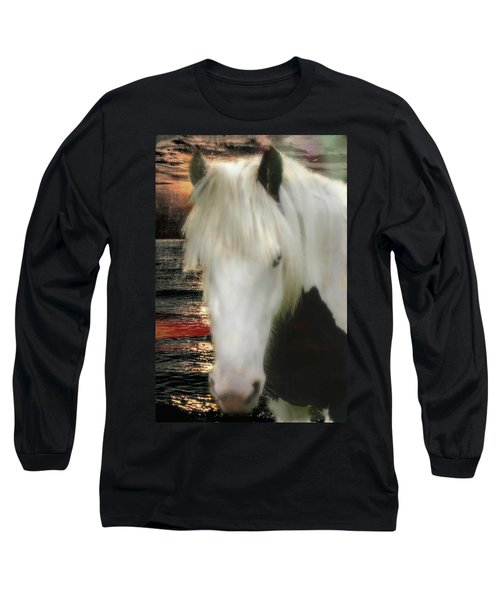 The Beautiful Face Of A Gypsy Vanner Horse Long Sleeve T-Shirt