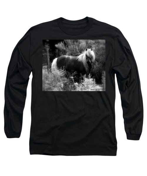 Vanity Long Sleeve T-Shirt
