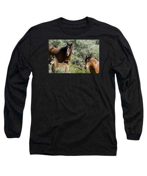 Wild Mustang Herd Long Sleeve T-Shirt