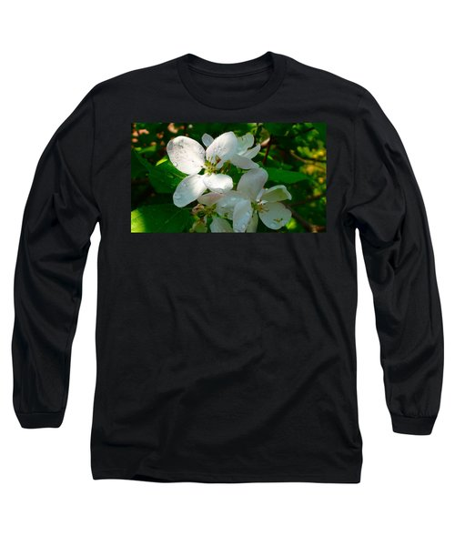 Long Sleeve T-Shirt featuring the painting Apple Blossoms by Johanna Bruwer