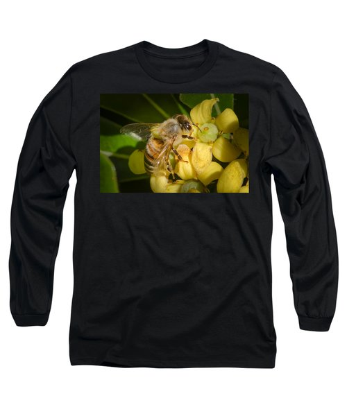 Bees Gathering From Pittosporum Flowers Long Sleeve T-Shirt