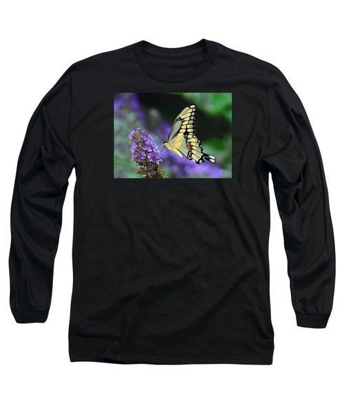 Giant Swallowtail Long Sleeve T-Shirt by Rodney Campbell