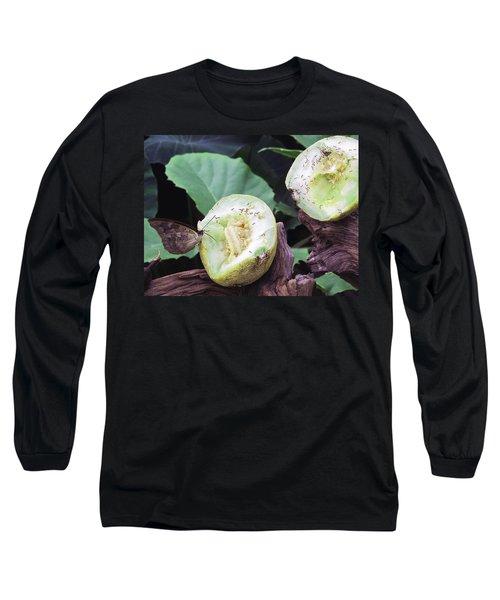 Butterfly Buffet Long Sleeve T-Shirt