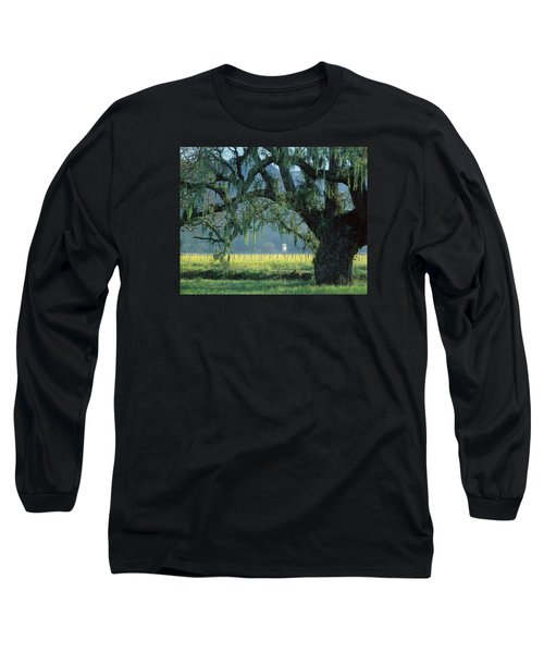2b6319 Mustard In The Oaks Sonoma Ca Long Sleeve T-Shirt