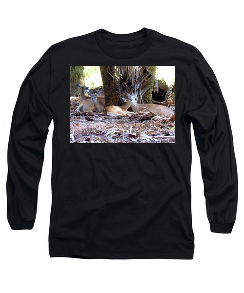 4 Wild Deer Long Sleeve T-Shirt by Rosalie Scanlon