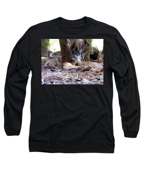4 Wild Deer Long Sleeve T-Shirt