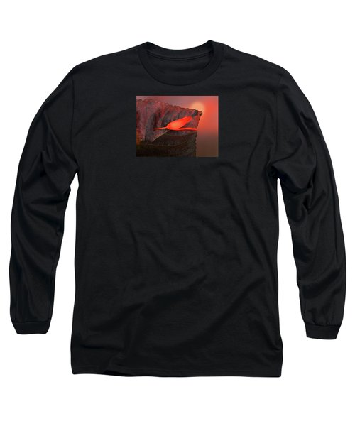 Long Sleeve T-Shirt featuring the photograph 4366 by Peter Holme III
