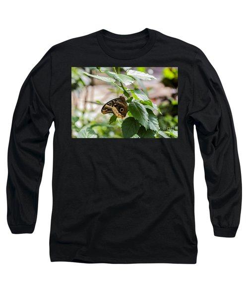 Owl Butterfly Long Sleeve T-Shirt